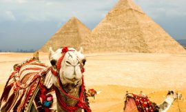 In 'Travel World Cup' Poll Egypt is Most Popular Destination